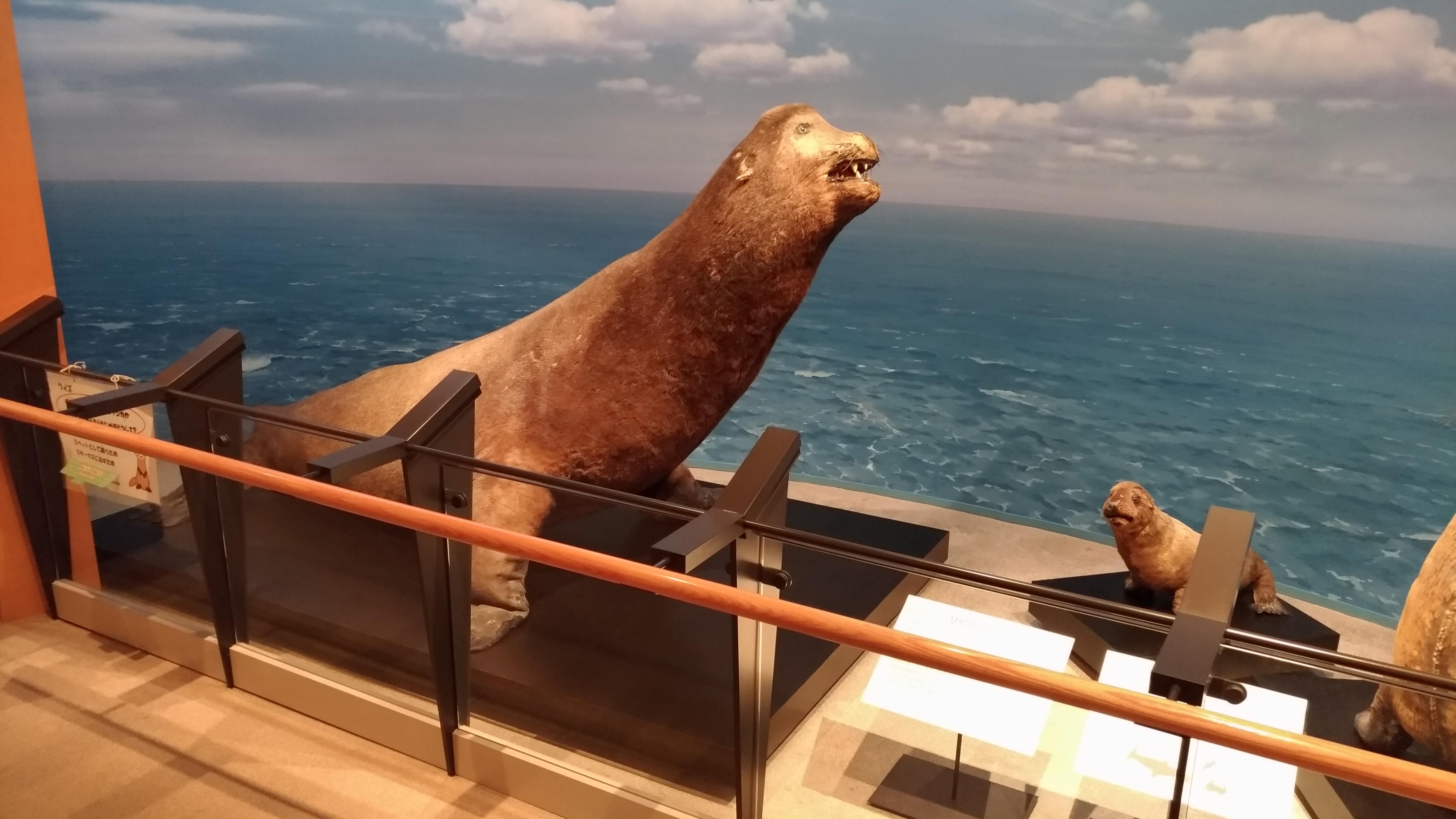 三瓶山自然科学博物館サヒメルに行った